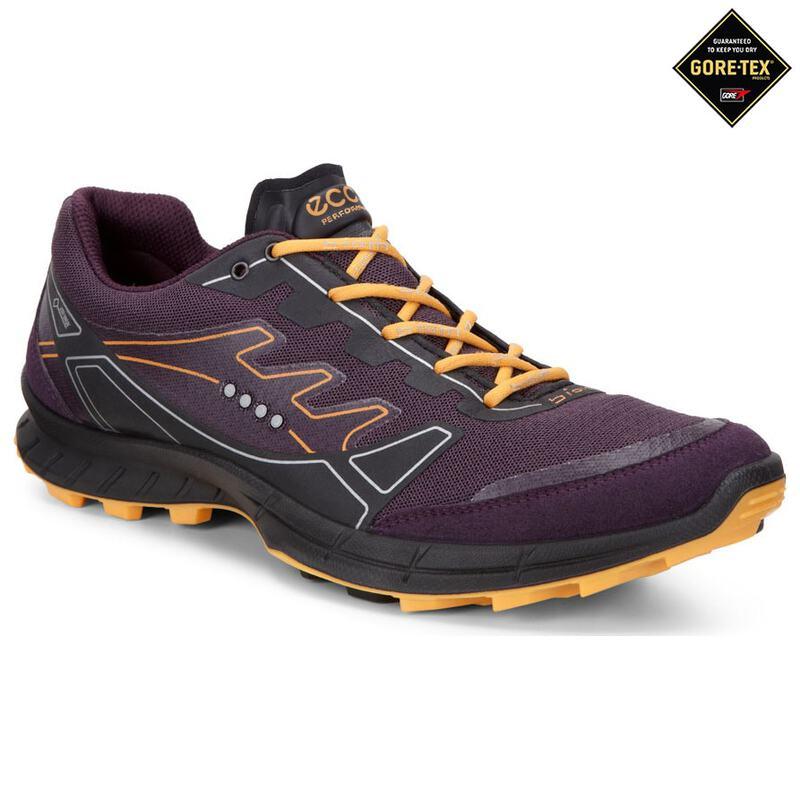 b0754c5f4f54a5 Ecco Womens GTX Biom Trail FL Shoes (MauveFanta)